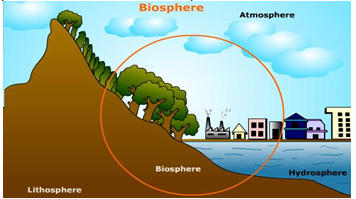 the biosphere consists of